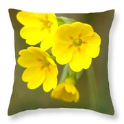 Primula Cowslip Fairy Cups Throw Pillow