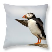 Puffin On The Farne Islands Great Britain Throw Pillow