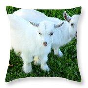 Pygmy Goat Twins Throw Pillow by Thomas R Fletcher