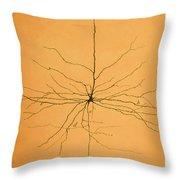 Pyramidal Cell In Cerebral Cortex, Cajal Throw Pillow