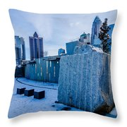 Rare Winter Scenery Around Charlotte North Carolina Throw Pillow