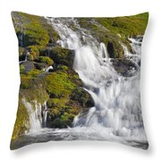 River San Juan  Throw Pillow