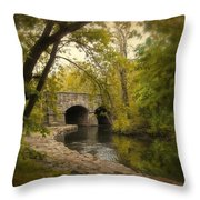 Riverbank Reflections Throw Pillow