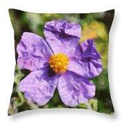 Rockrose Flower Throw Pillow