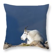 Rocky Mountain Goat Throw Pillow