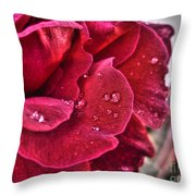Red Rose And Summer Rain Throw Pillow