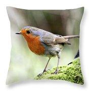 Rouge Gorge Erithacus Rubecula Throw Pillow