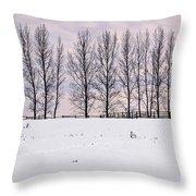 Rural Winter Landscape Throw Pillow by Elena Elisseeva