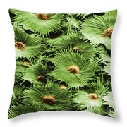 Russian Silverberry Leaf Sem Throw Pillow