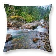 Sauk River Throw Pillow