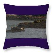 Seals Series 2  Throw Pillow