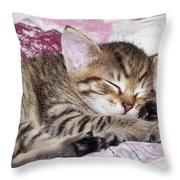 Sleeping Kitten Throw Pillow