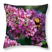 Snowberry Clearwing Hummingbird Moth Throw Pillow