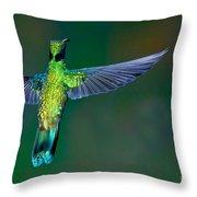 Sparkling Violetear Throw Pillow