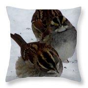 3 Sparrows Throw Pillow