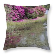 Spring In Mississippi Throw Pillow