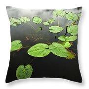 Stillness Throw Pillow by Scott Pellegrin