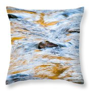 Stream Great Smoky Mountains Painted Throw Pillow