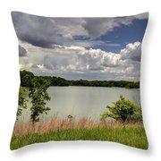 3-summer Time At Moraine View State Park Throw Pillow