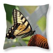 Swallowtail On Coneflower Throw Pillow
