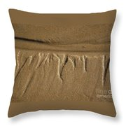 Temporary Illusions Throw Pillow