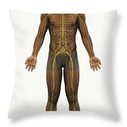 The Nerves Of The Body Throw Pillow