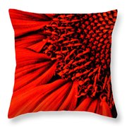 3 Tile Sunflower Colors Throw Pillow