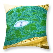 Tomato Chloroplast, Tem Throw Pillow