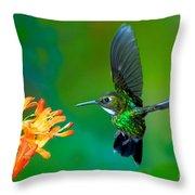 Tourmaline Sunangel Throw Pillow