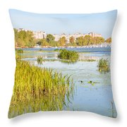 Trees And Reeds Close To The River Throw Pillow