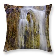 Turner Falls Throw Pillow