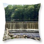 Unicorn Lake Throw Pillow