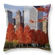 Usa, Illinois, Chicago, Millennium Throw Pillow