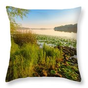 View Of The Dniper River At Morning Throw Pillow