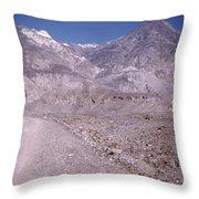 Vintage Death Valley By Lynn Bramkamp Throw Pillow