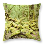 Virgin Rainforest Wilderness Of Fiordland Np Nz Throw Pillow