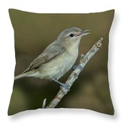 Warbling Vireo Throw Pillow