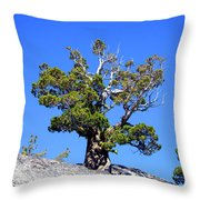 Warrior Against The Elements Throw Pillow