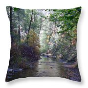 West Fork Oak Creek Throw Pillow