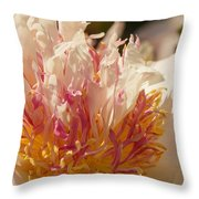 White And Pink Peony 2 Throw Pillow