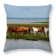 Wild Horses Of Assateague Island Throw Pillow