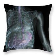 X-ray Anatomy Throw Pillow