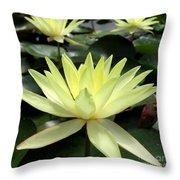 3 Yellow Lotus Throw Pillow