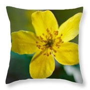 Yellow Wood Anemone Throw Pillow