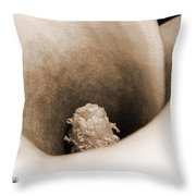 Zantedeschia Named Picasso Throw Pillow