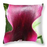 Zantedeschia Named Schwarzwalder Throw Pillow