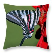 Zebra Swallowtail Butterfly Throw Pillow