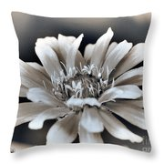 Zinnia From The Whirligig Mix Throw Pillow