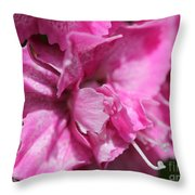 Sweet William From The Super Duplex Bluepoint Mix Throw Pillow