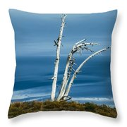 30914-37 A Harsh Climate Throw Pillow